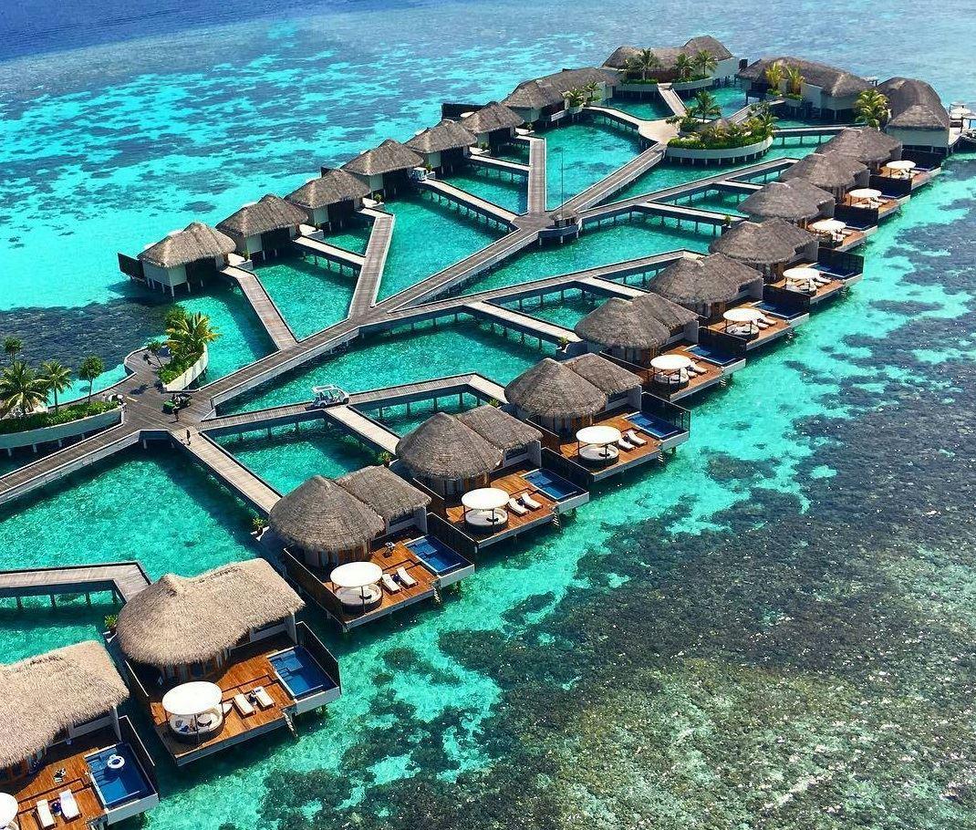 Paketa muaj mjalti ne Maldive